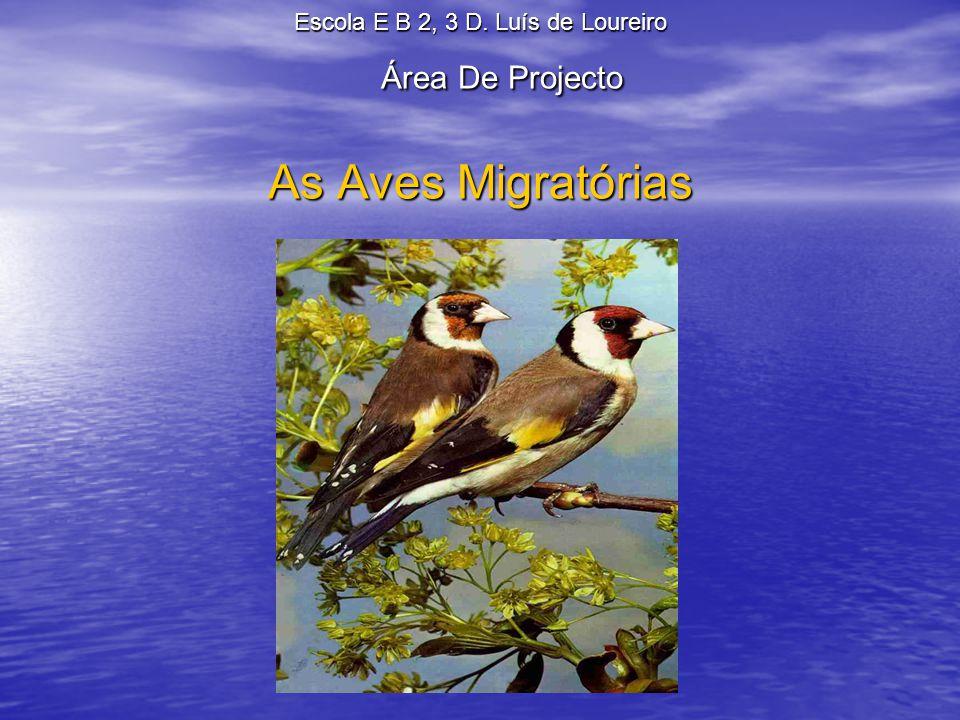 Escola E B 2, 3 D. Luís de Loureiro Área De Projecto As Aves Migratórias
