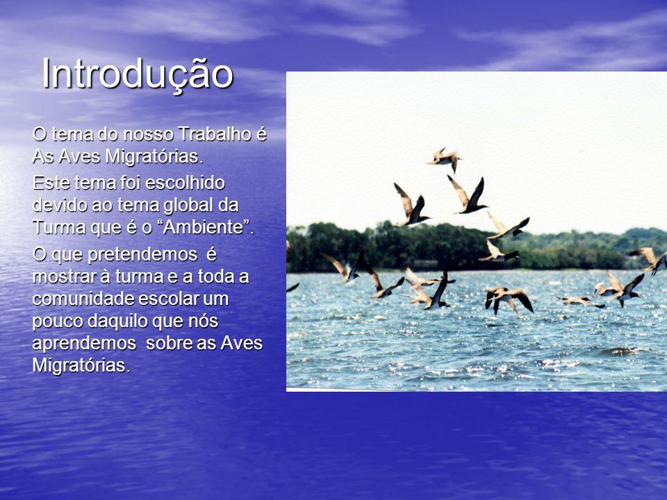 Introdução O tema do nosso Trabalho é As Aves Migratórias. Este tema foi escolhido devido ao tema global da Turma que é o Ambiente .