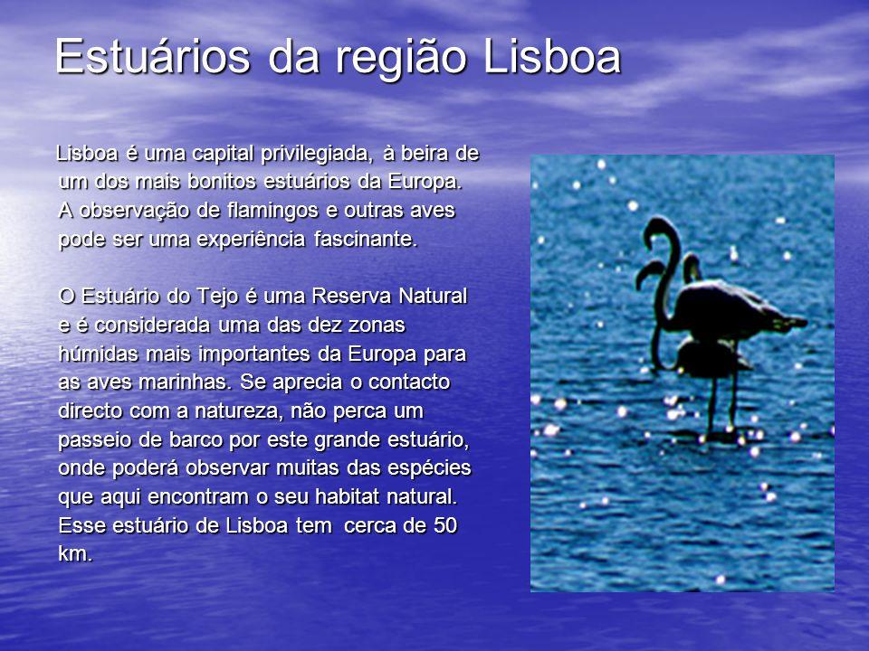 Estuários da região Lisboa