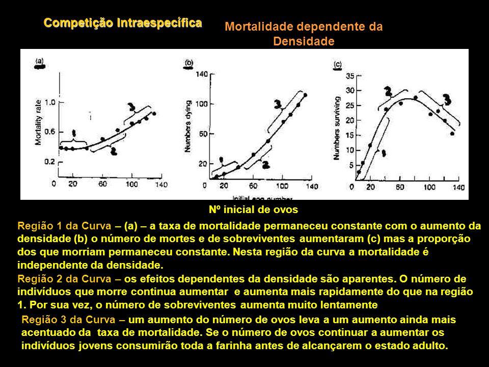 Competição Intraespecífica Mortalidade dependente da Densidade