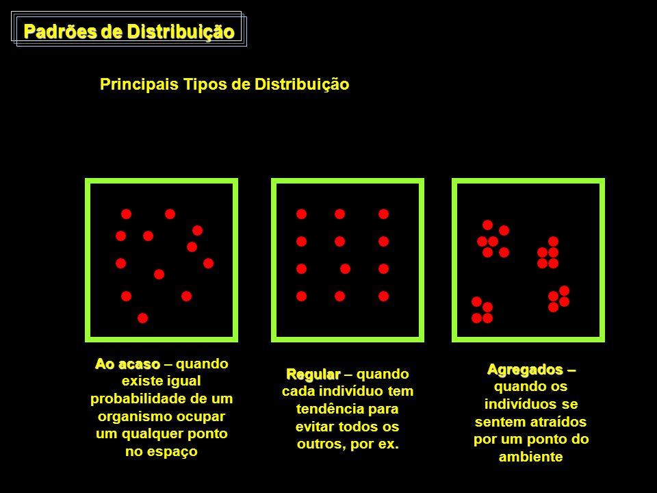 Padrões de Distribuição