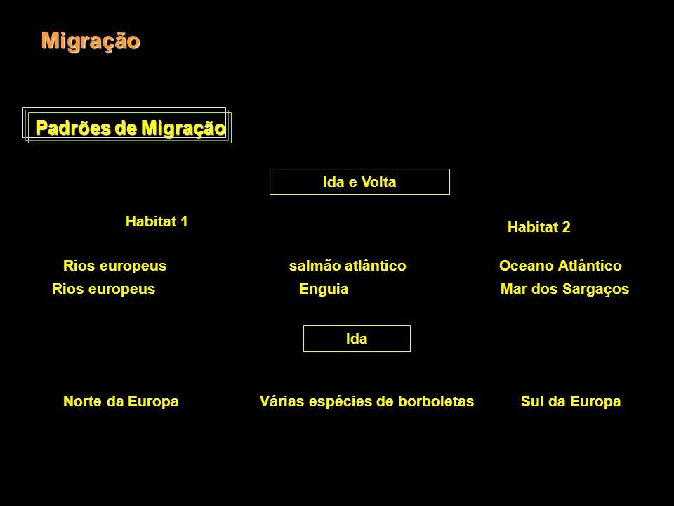 Migração Padrões de Migração Ida e Volta Habitat 1 Habitat 2