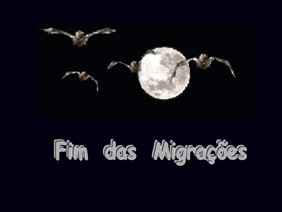 Fim das Migrações
