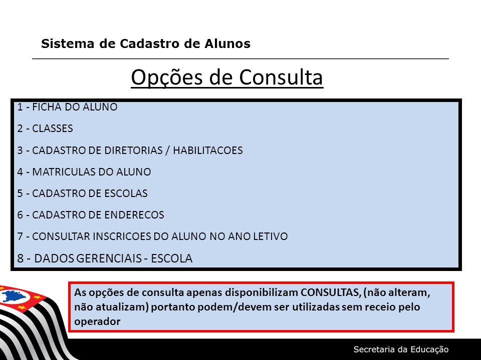 Opções de Consulta 8 - DADOS GERENCIAIS - ESCOLA