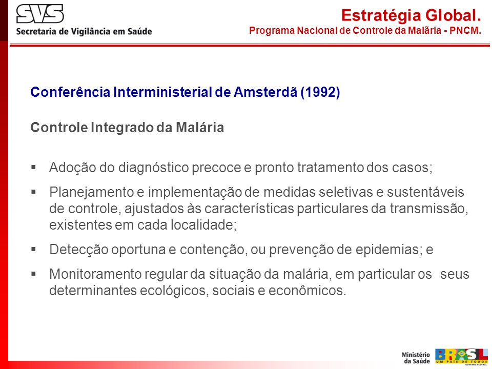 Estratégia Global. Conferência Interministerial de Amsterdã (1992)