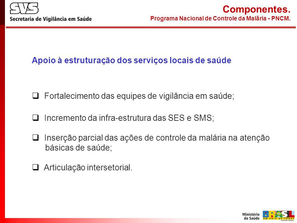 Componentes. Apoio à estruturação dos serviços locais de saúde