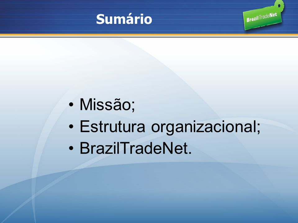 Estrutura organizacional; BrazilTradeNet.