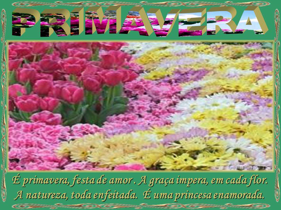 PRIMAVERA É primavera, festa de amor . A graça impera, em cada flor.