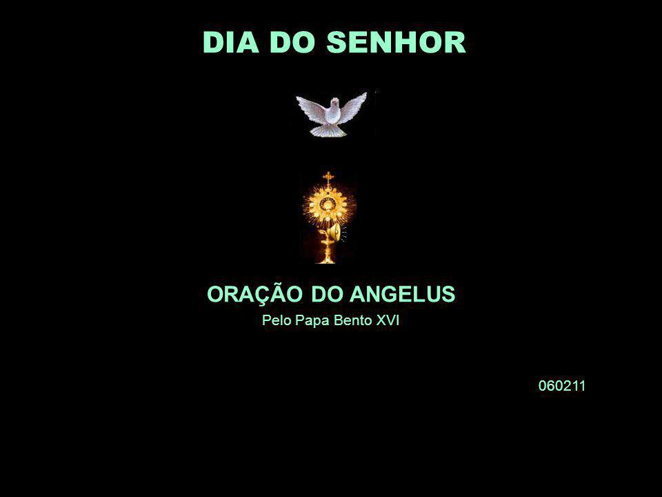 † ORAÇÃO DO ANGELUS Pelo Papa Bento XVI 060211