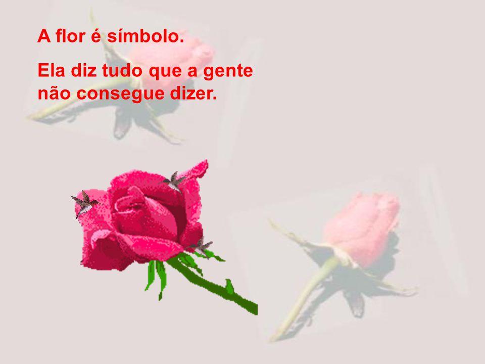 A flor é símbolo. Ela diz tudo que a gente não consegue dizer.