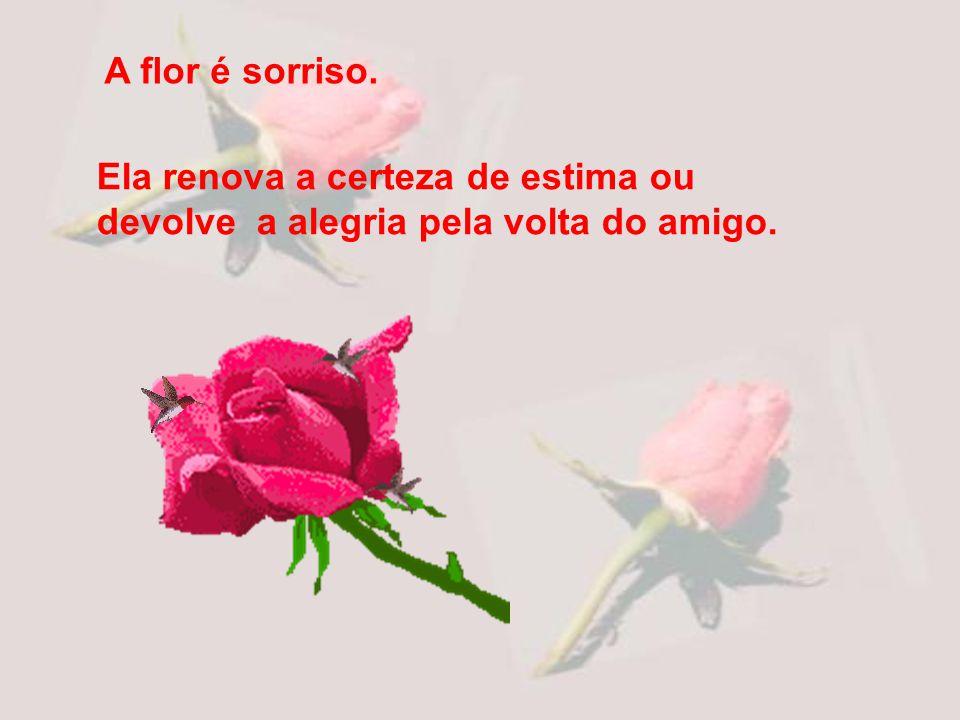 A flor é sorriso. Ela renova a certeza de estima ou devolve a alegria pela volta do amigo.