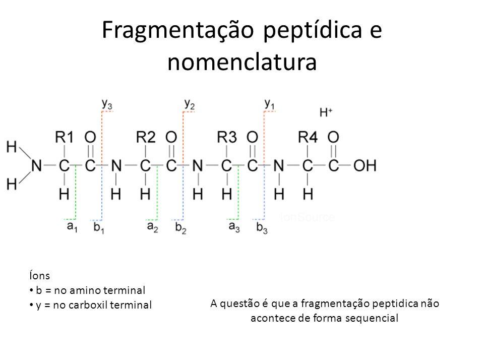 Fragmentação peptídica e nomenclatura