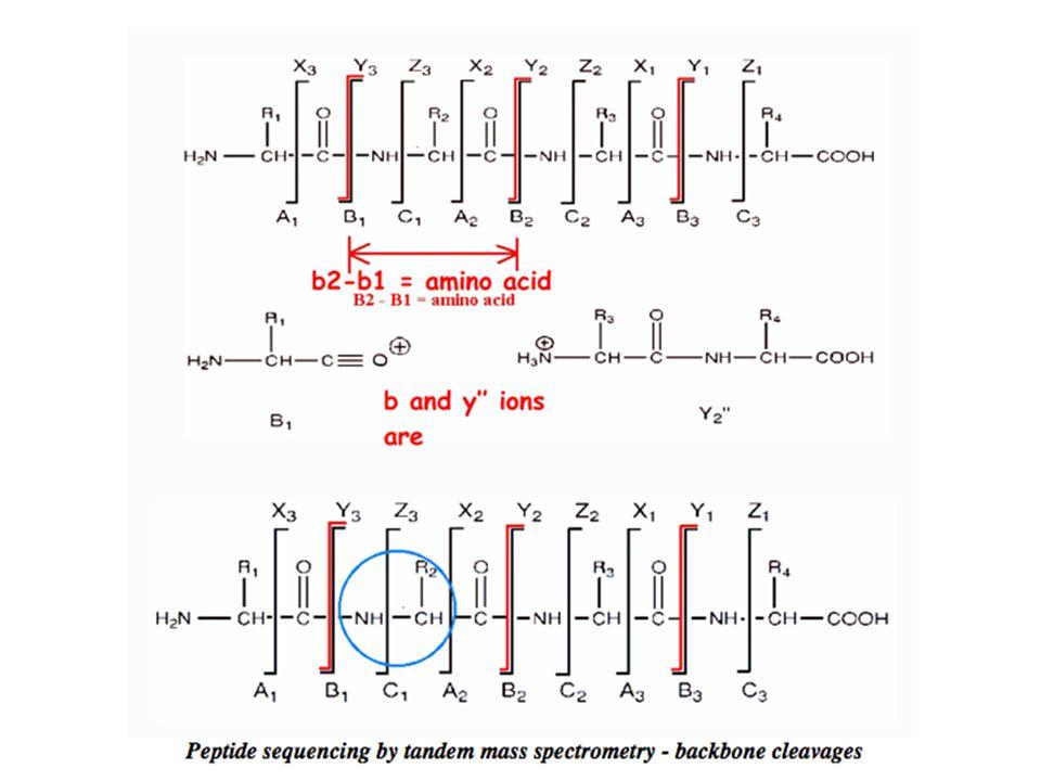 Tipos possiveis das quebradas das ligações