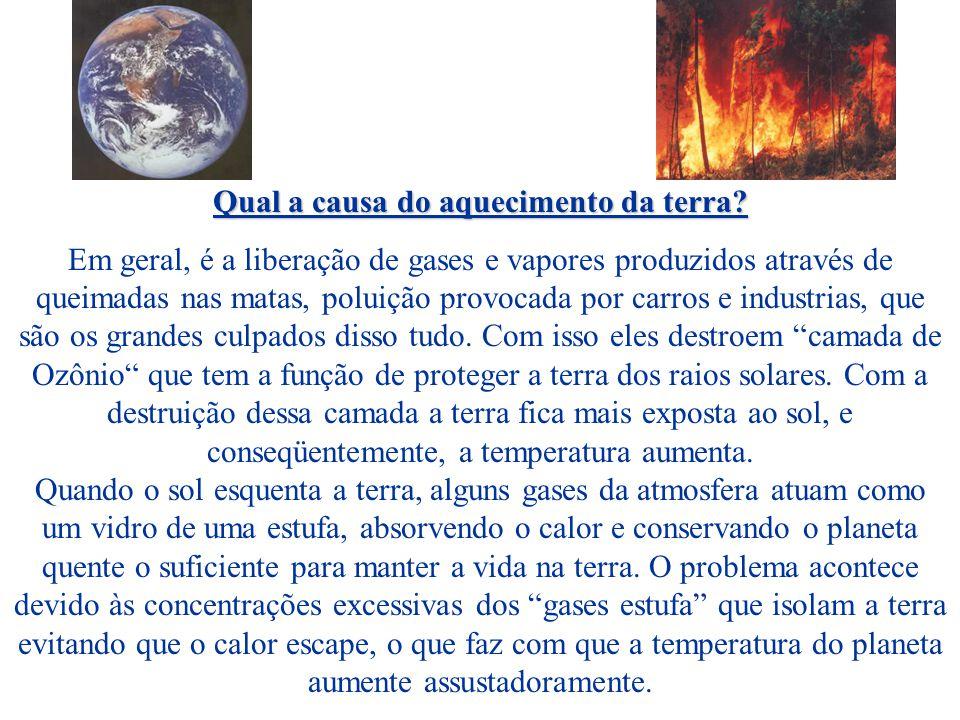 Qual a causa do aquecimento da terra
