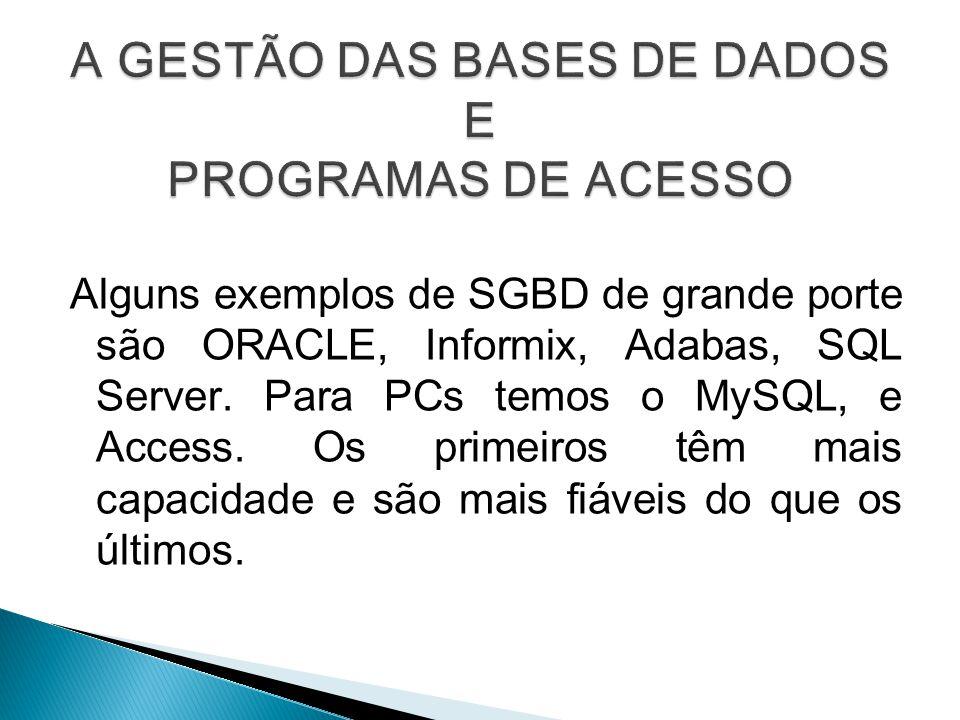 A GESTÃO DAS BASES DE DADOS E PROGRAMAS DE ACESSO