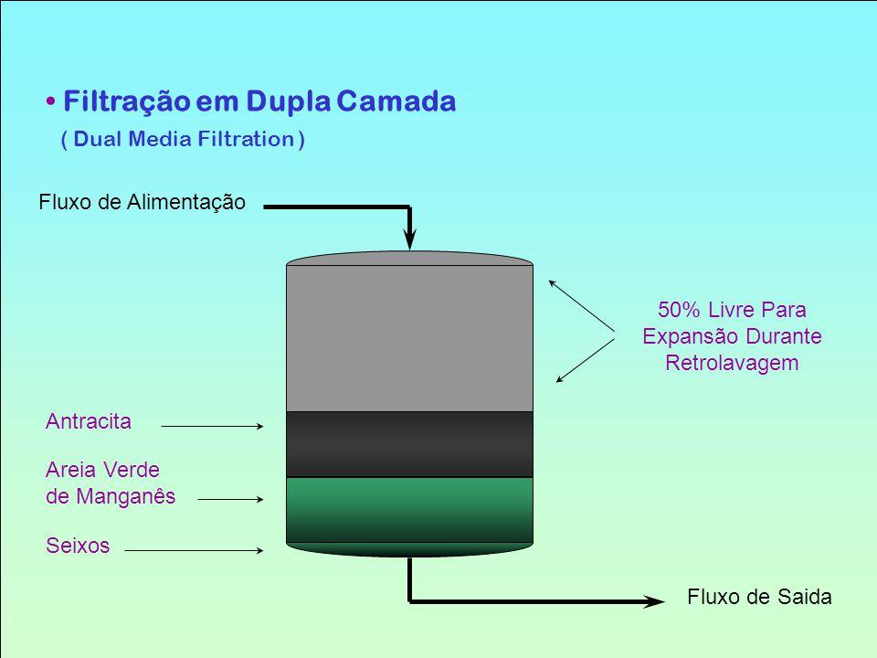Filtração em Dupla Camada ( Dual Media Filtration )