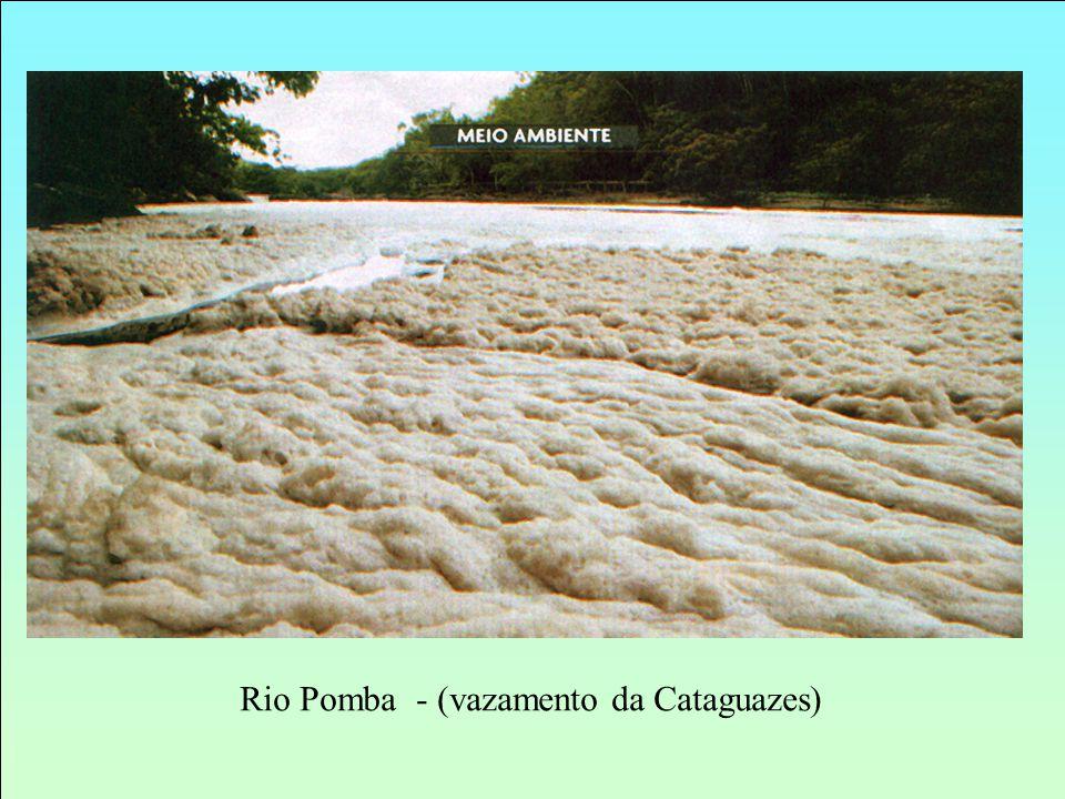 Rio Pomba - (vazamento da Cataguazes)