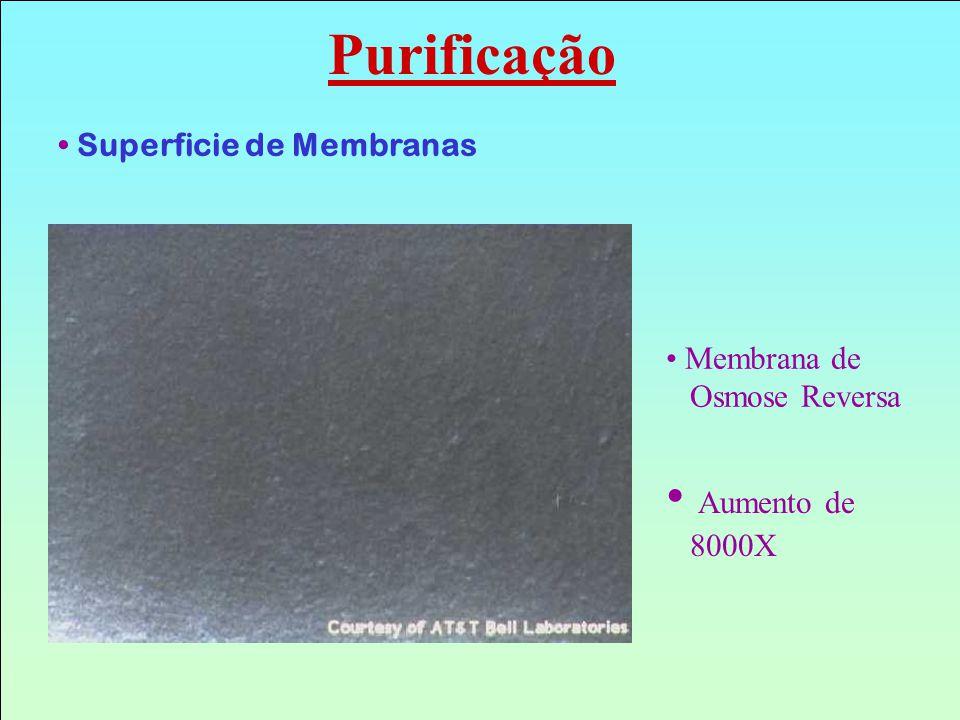 Purificação Aumento de 8000X Superficie de Membranas