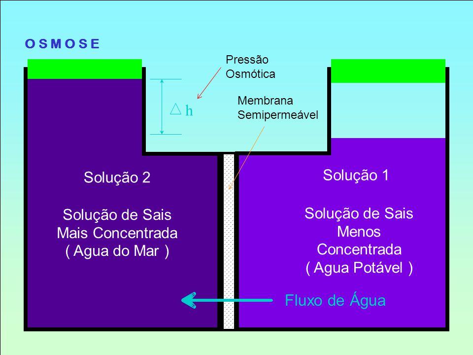h Fluxo de Água Solução 1 Solução 2 Solução de Sais Mais Concentrada