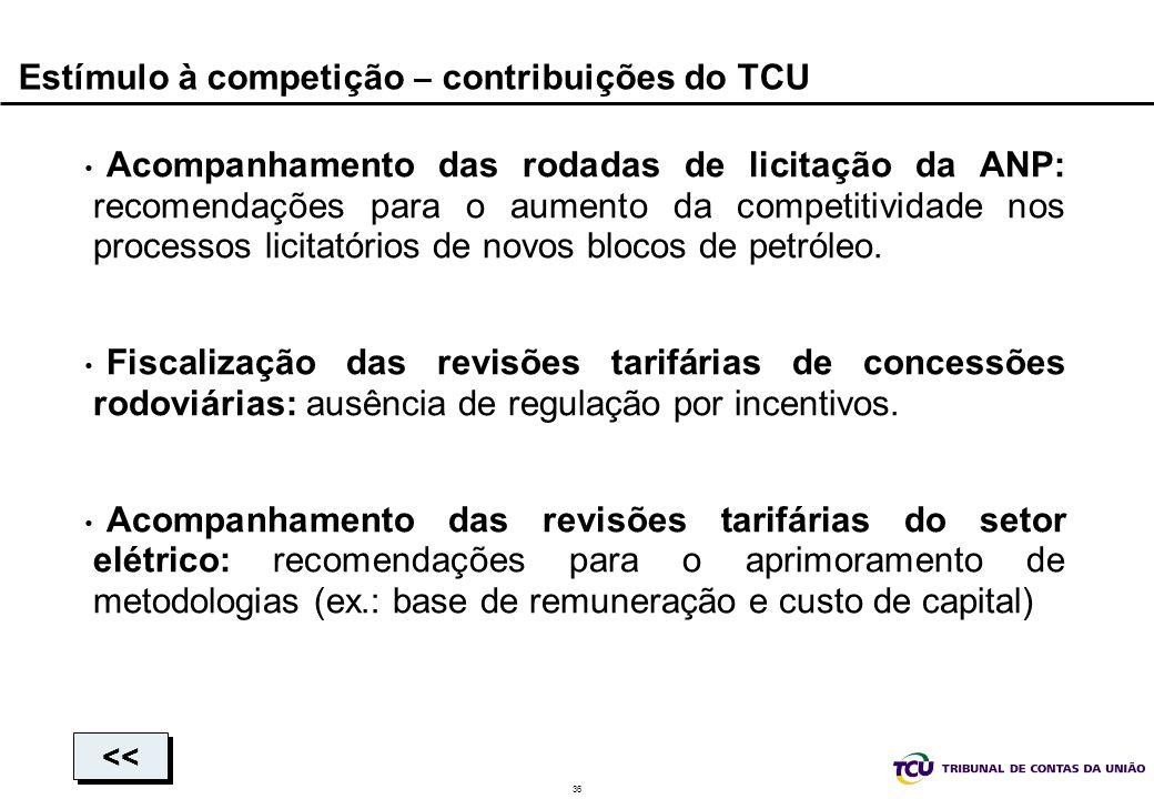 Estímulo à competição – contribuições do TCU