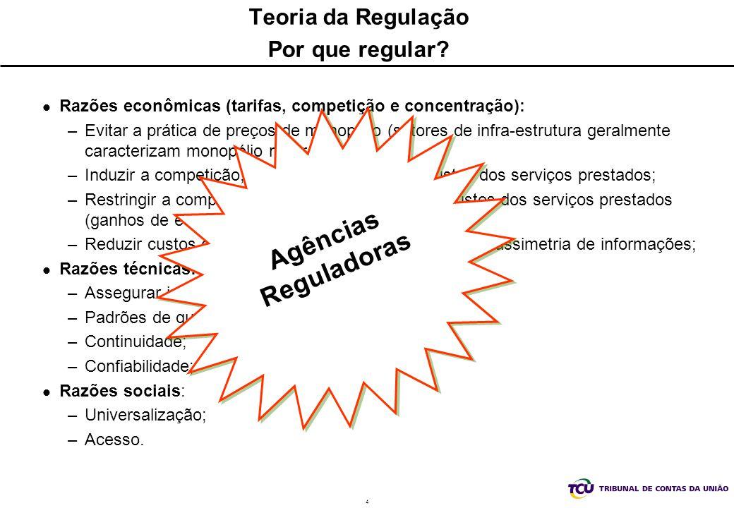 Teoria da Regulação Por que regular