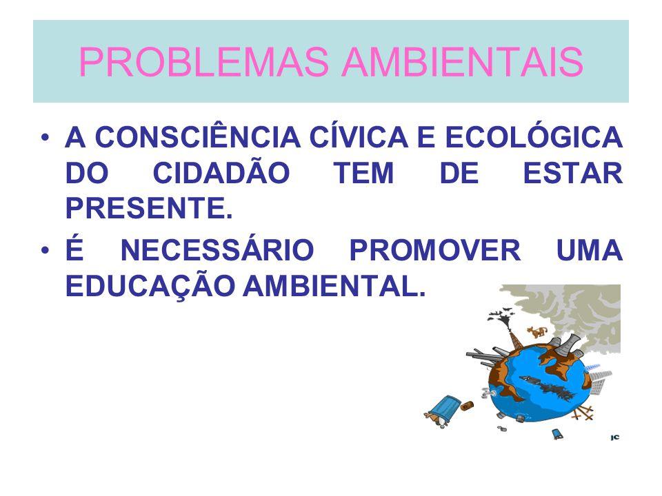 PROBLEMAS AMBIENTAIS A CONSCIÊNCIA CÍVICA E ECOLÓGICA DO CIDADÃO TEM DE ESTAR PRESENTE.