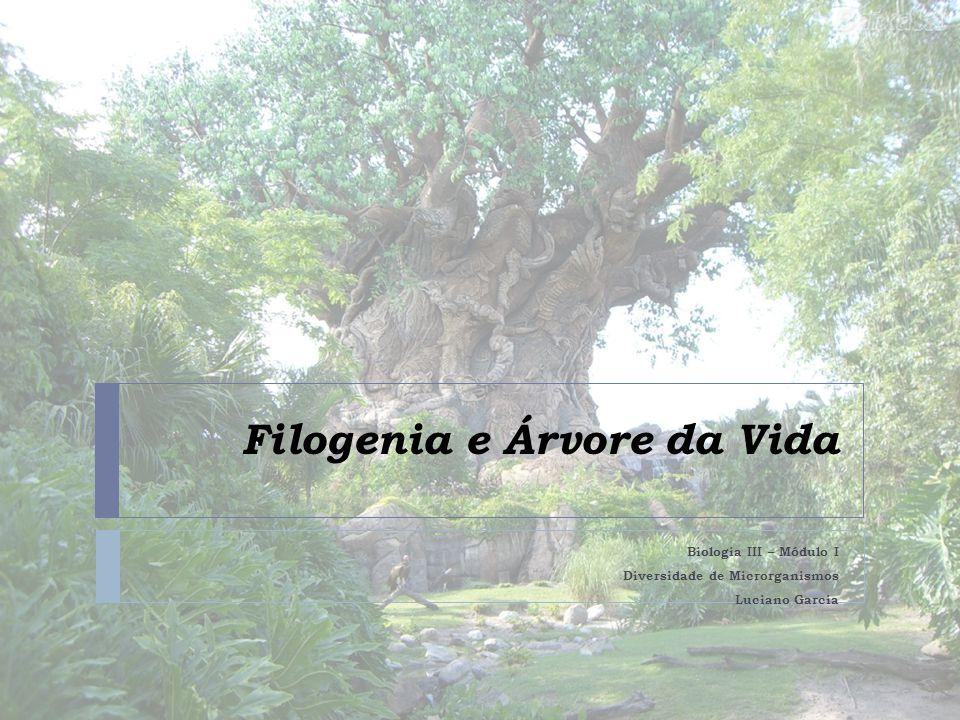 Filogenia e Árvore da Vida
