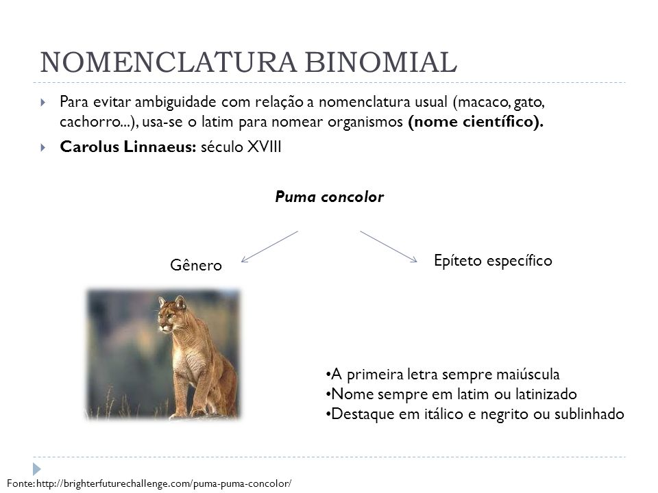 NOMENCLATURA BINOMIAL