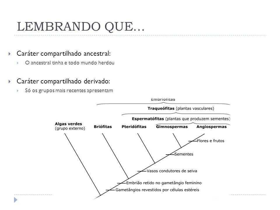 LEMBRANDO QUE... Caráter compartilhado ancestral: