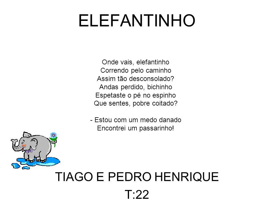 TIAGO E PEDRO HENRIQUE T:22