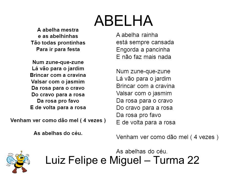 Luiz Felipe e Miguel – Turma 22