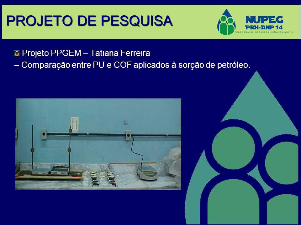 PROJETO DE PESQUISA Projeto PPGEM – Tatiana Ferreira