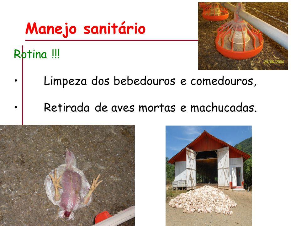 Manejo sanitário Rotina !!.