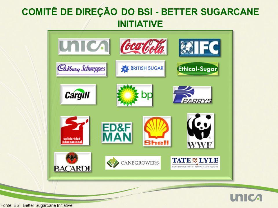 COMITÊ DE DIREÇÃO DO BSI - BETTER SUGARCANE INITIATIVE