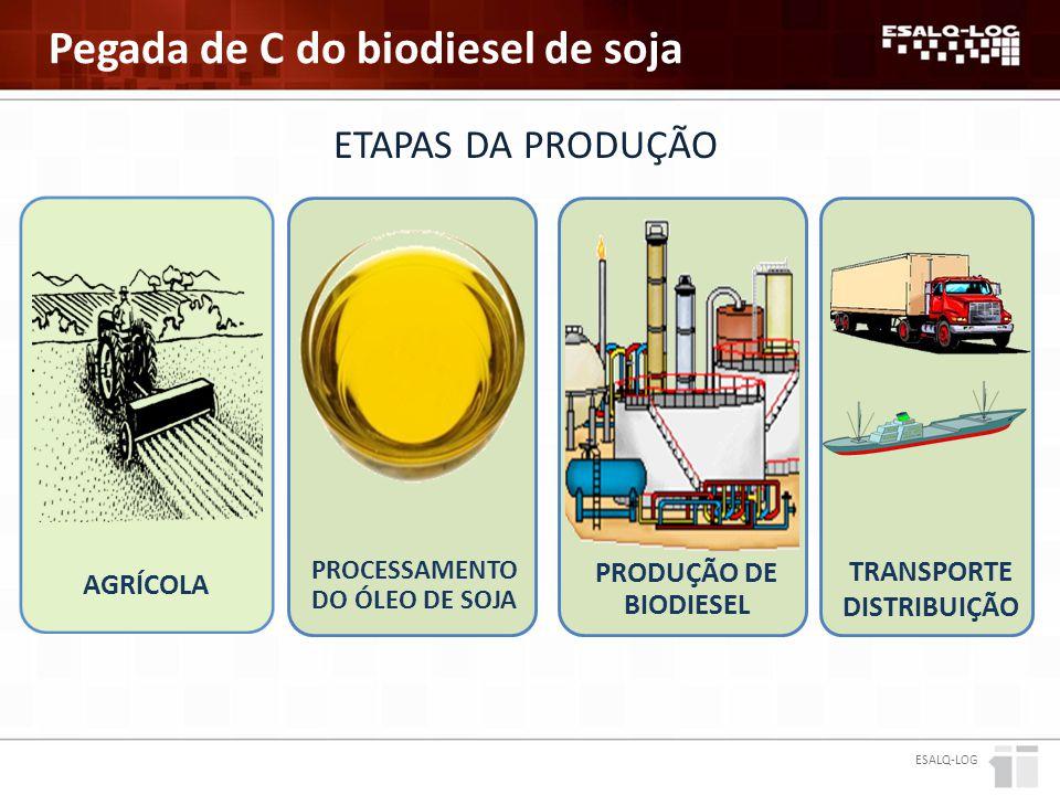 PROCESSAMENTO DO ÓLEO de soja Transporte distribuição