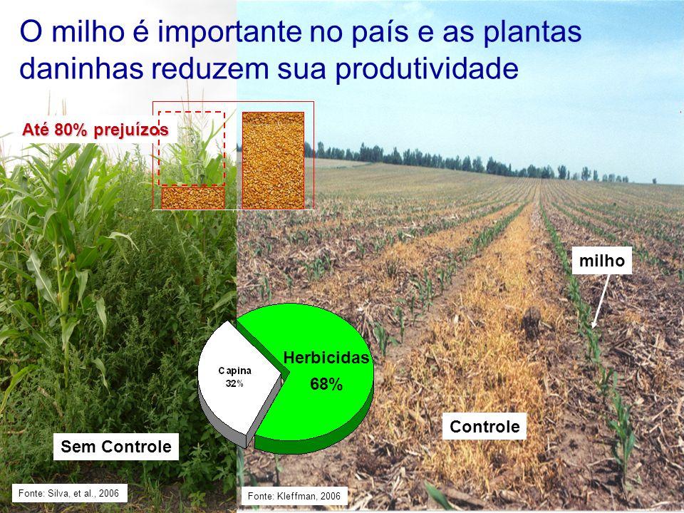 O milho é importante no país e as plantas daninhas reduzem sua produtividade