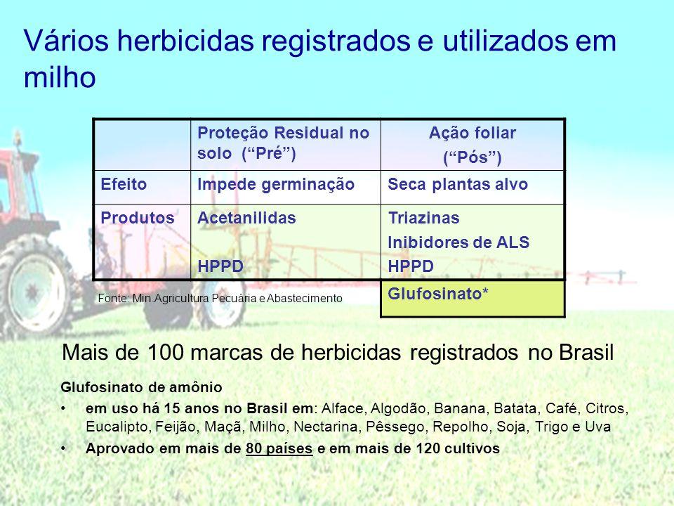 Vários herbicidas registrados e utilizados em milho