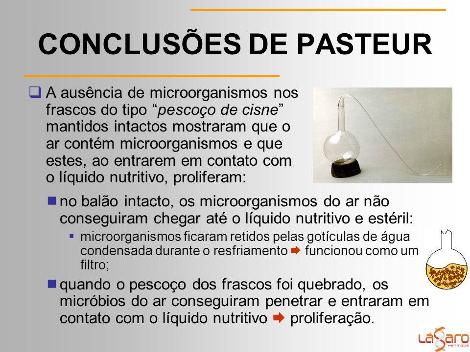CONCLUSÕES DE PASTEUR