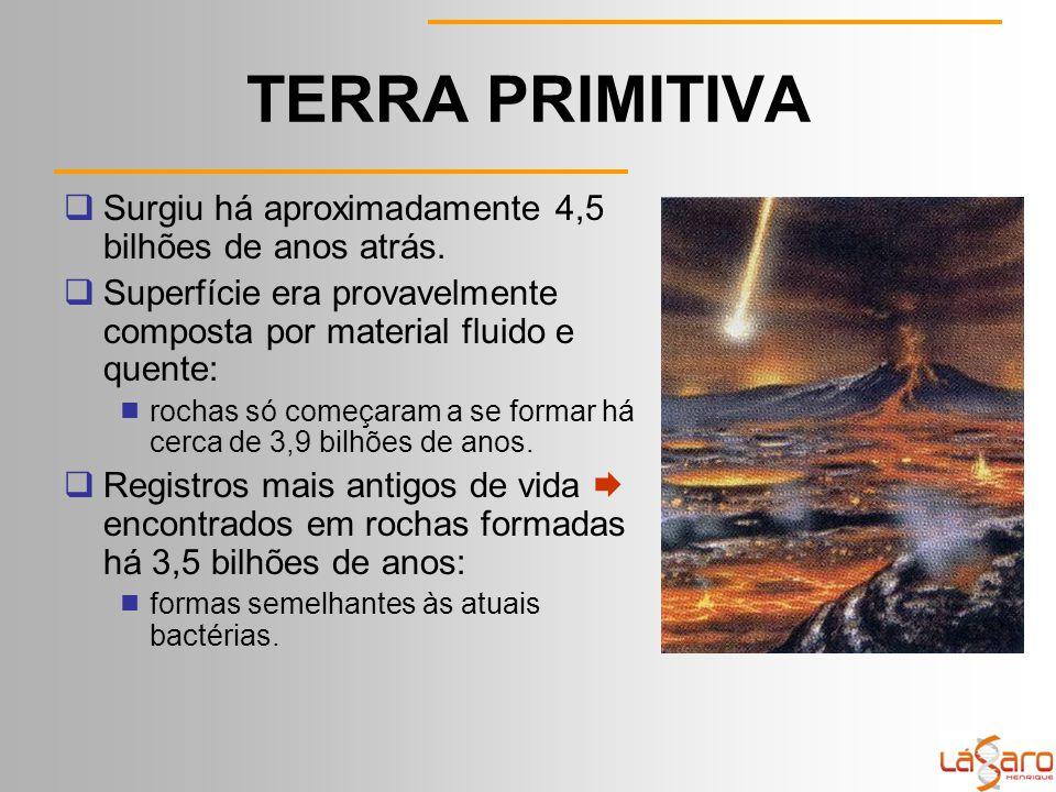 TERRA PRIMITIVA Surgiu há aproximadamente 4,5 bilhões de anos atrás.