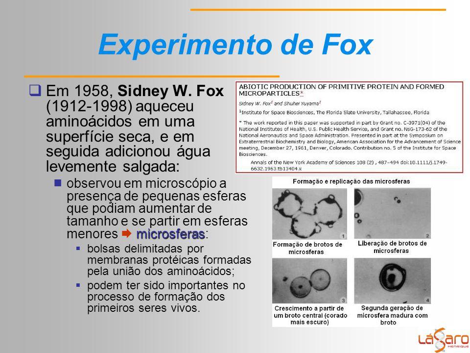 Experimento de Fox Em 1958, Sidney W. Fox (1912-1998) aqueceu aminoácidos em uma superfície seca, e em seguida adicionou água levemente salgada: