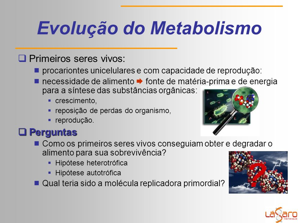 Evolução do Metabolismo