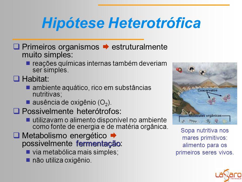 Hipótese Heterotrófica