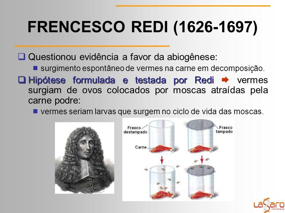 FRENCESCO REDI (1626-1697) Questionou evidência a favor da abiogênese: