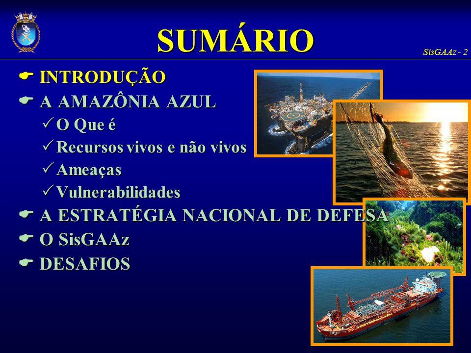 SUMÁRIO E INTRODUÇÃO E A AMAZÔNIA AZUL