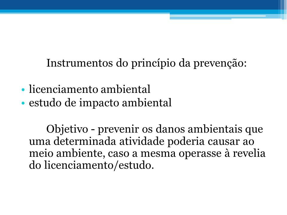 Instrumentos do princípio da prevenção: