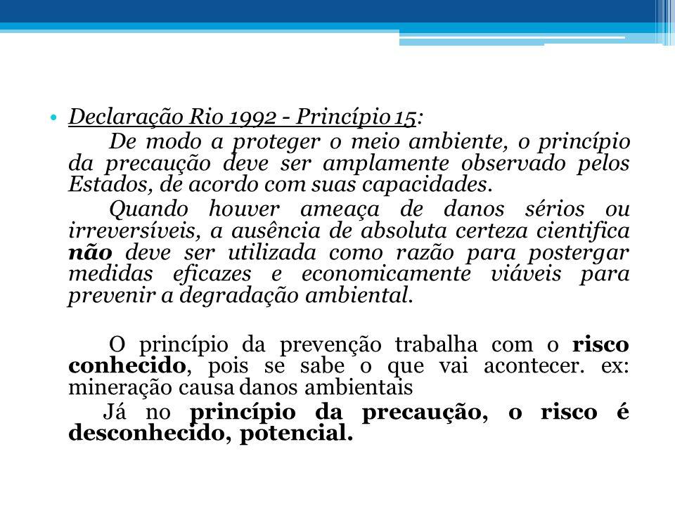 Declaração Rio 1992 - Princípio 15: