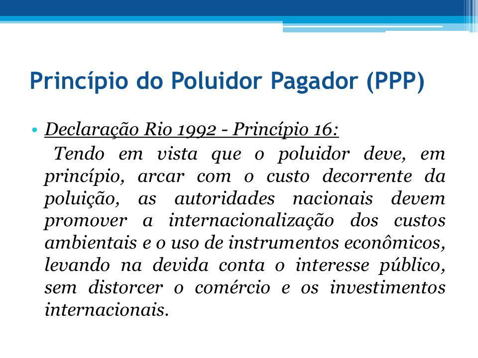 Princípio do Poluidor Pagador (PPP)