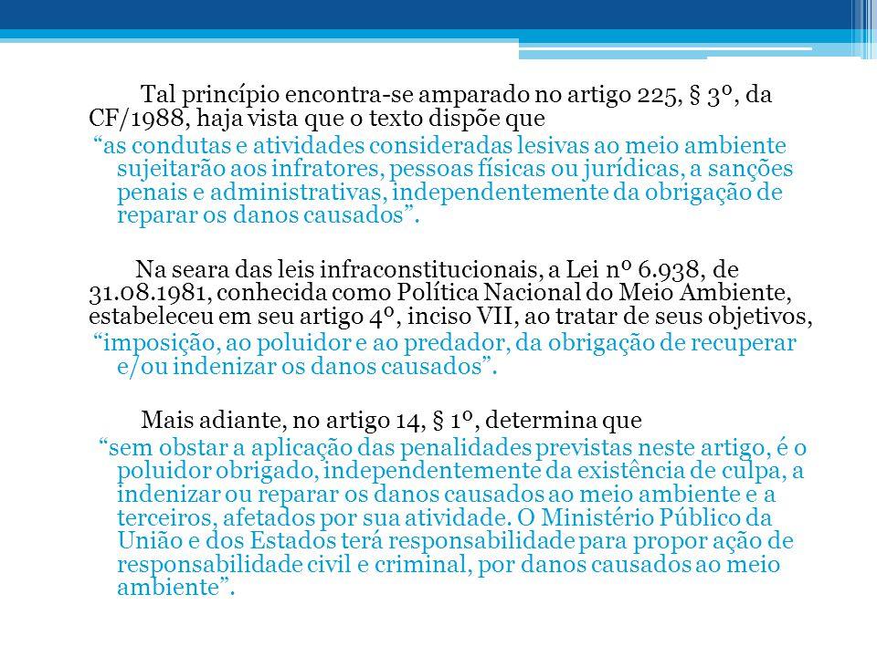 Tal princípio encontra-se amparado no artigo 225, § 3º, da CF/1988, haja vista que o texto dispõe que