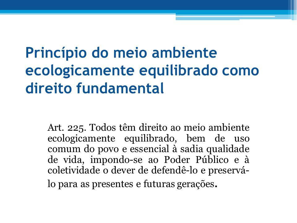 Princípio do meio ambiente ecologicamente equilibrado como direito fundamental
