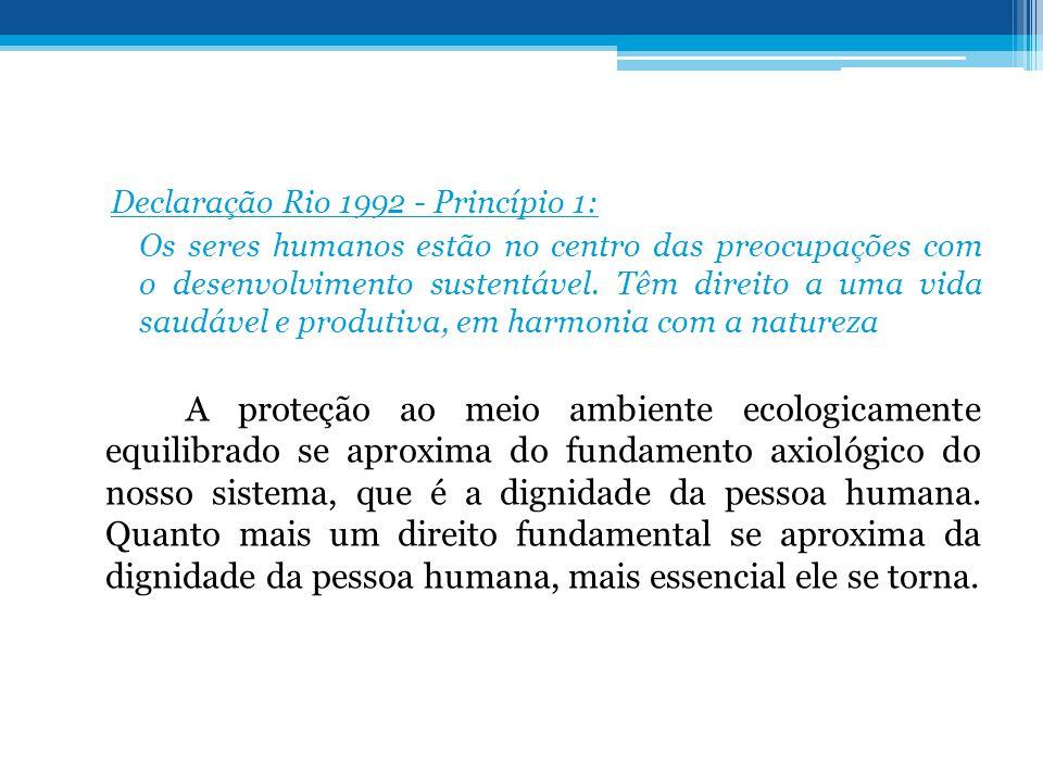 Declaração Rio 1992 - Princípio 1: